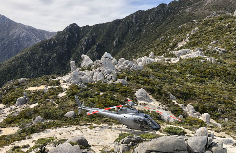 Helicopter Mt Olympus