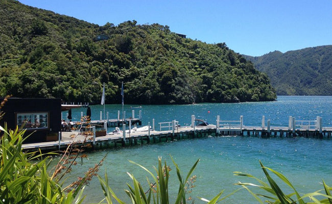 Jetty In Marlborough Sounds