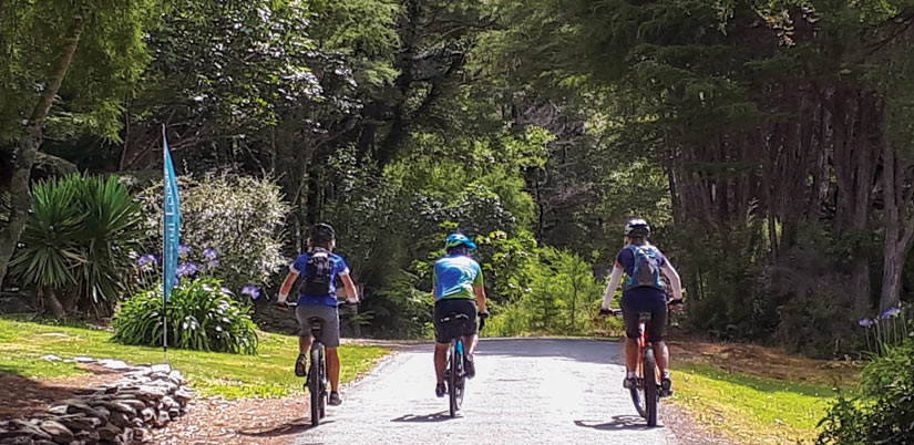 Marlborough Sounds Heli Cycle Tour: Guided Cycle Tours Of New Zealand